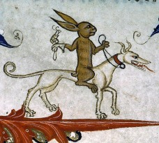 hare riding to hunt with snail perched on gauntlet