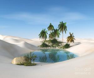oasis-in-the-desert-palm-trees-and-ustas7777777
